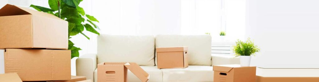 Packers and Movers in noida Sector 12