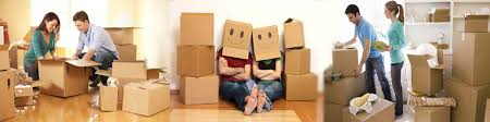 Packers and Movers in Noida Sector 14