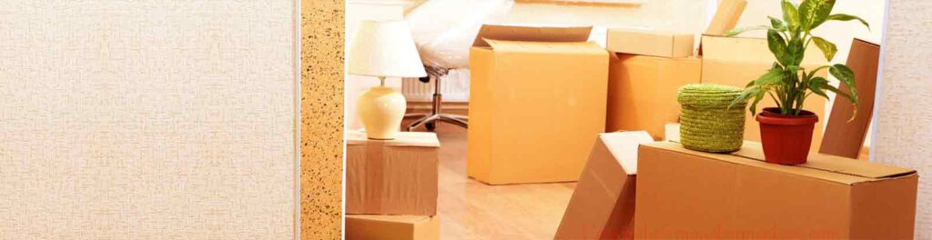 Packers and Movers in noida Sector 3